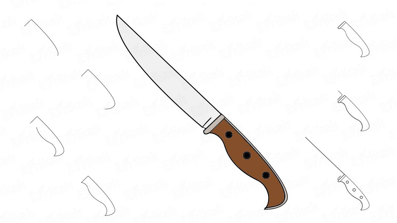 How to draw a kitchen knife step by step (+ coloring)