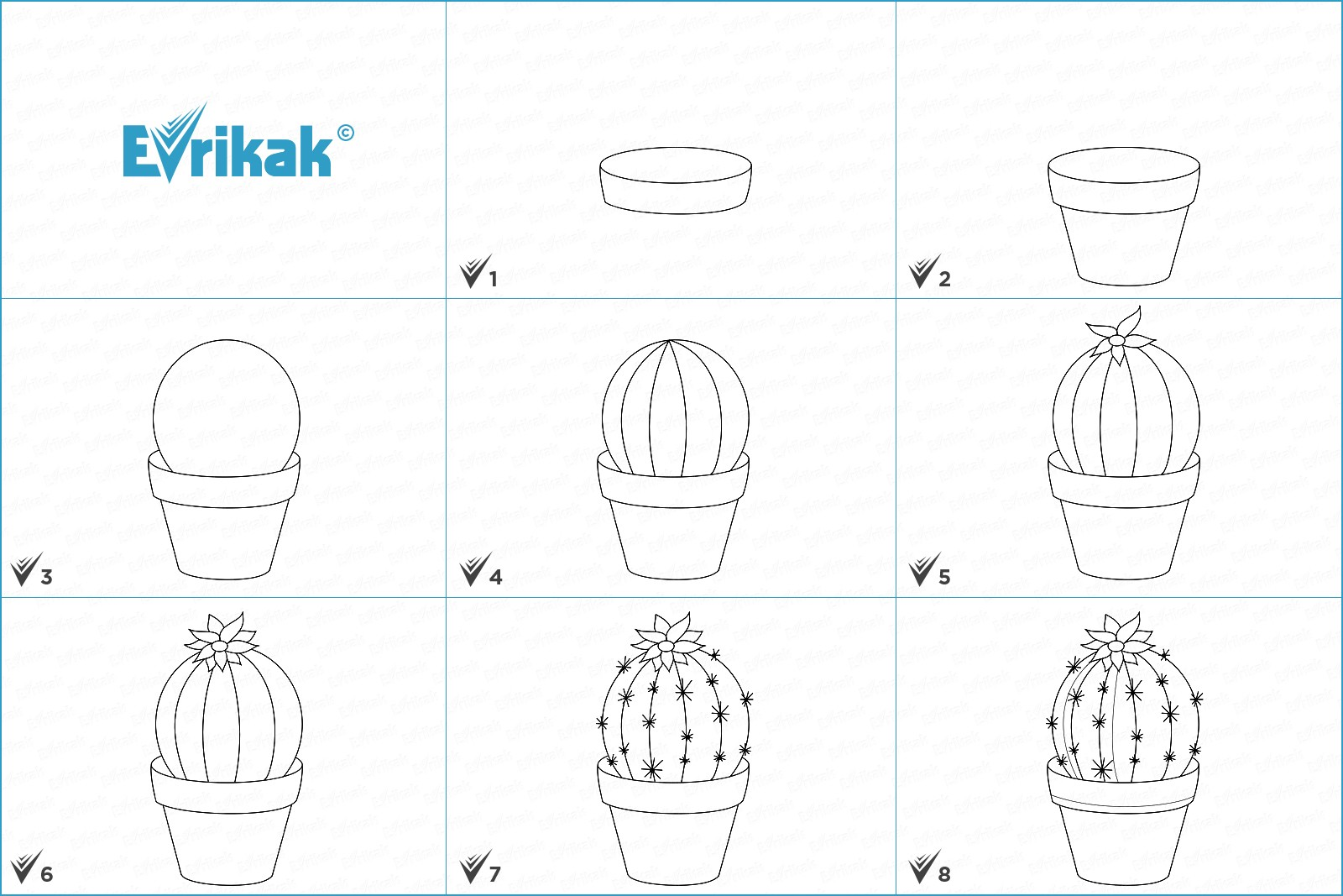 Collage of the stages of a cactus drawing