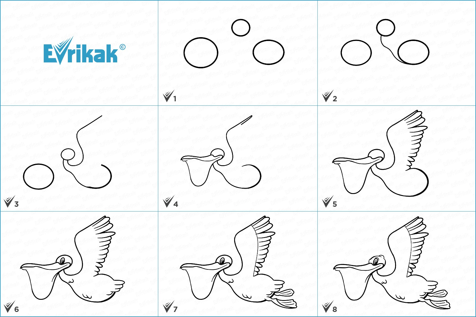 Collage of the stages of a pelican drawing