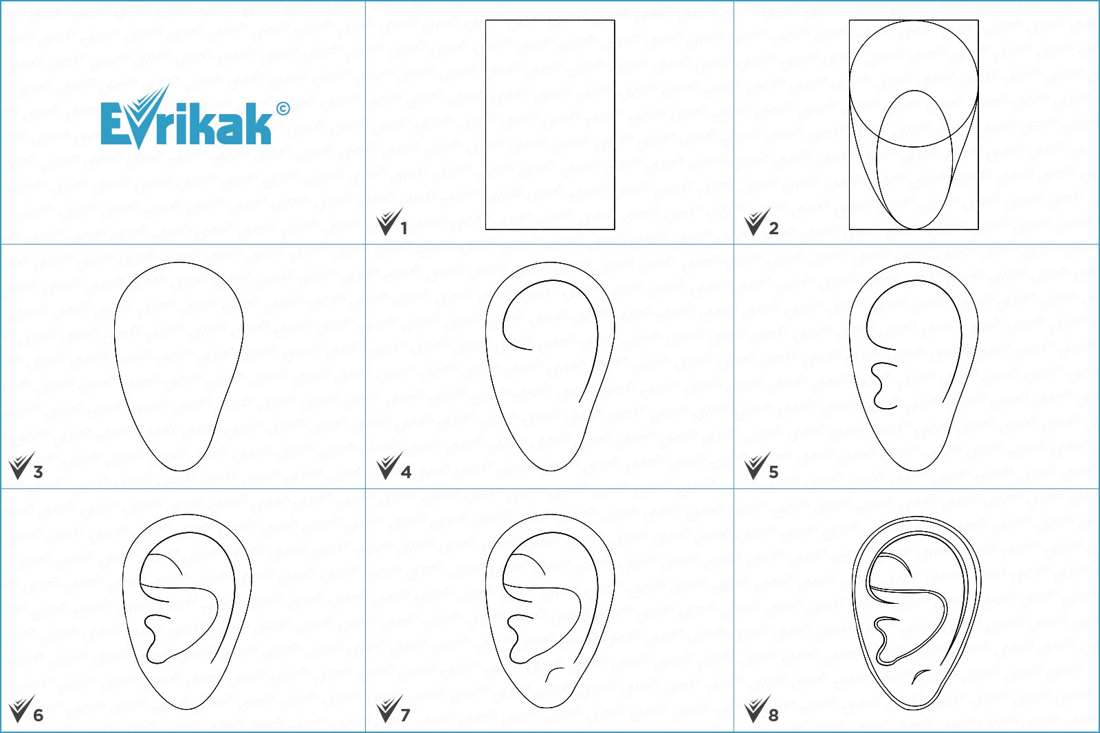 Collage of the stages of the ear drawing