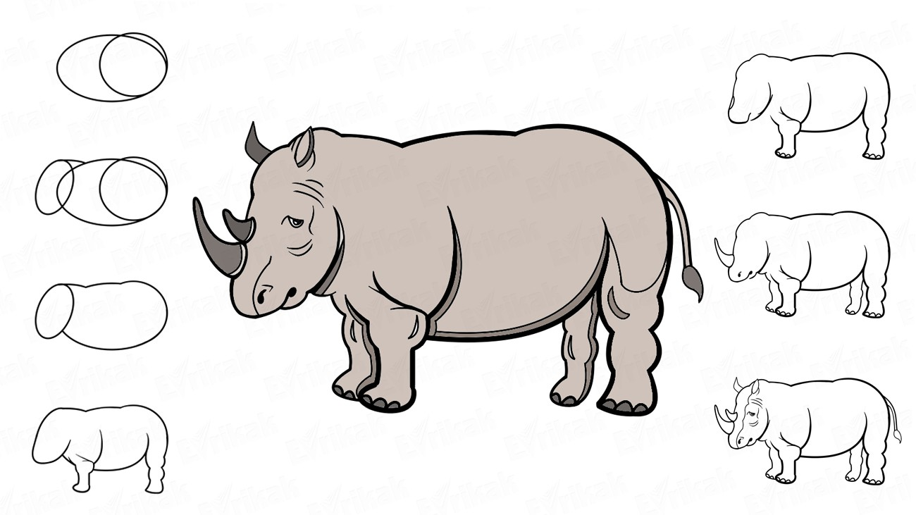 How to draw a rhino: step by step instruction (+ coloring)