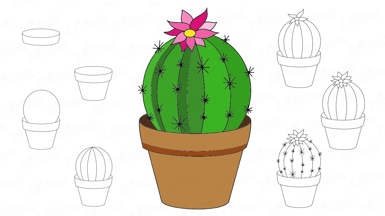 How to draw a cactus in a flower pot (+ coloring)