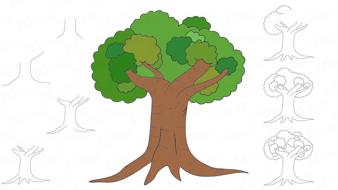 How to draw a deciduous tree (+ coloring)