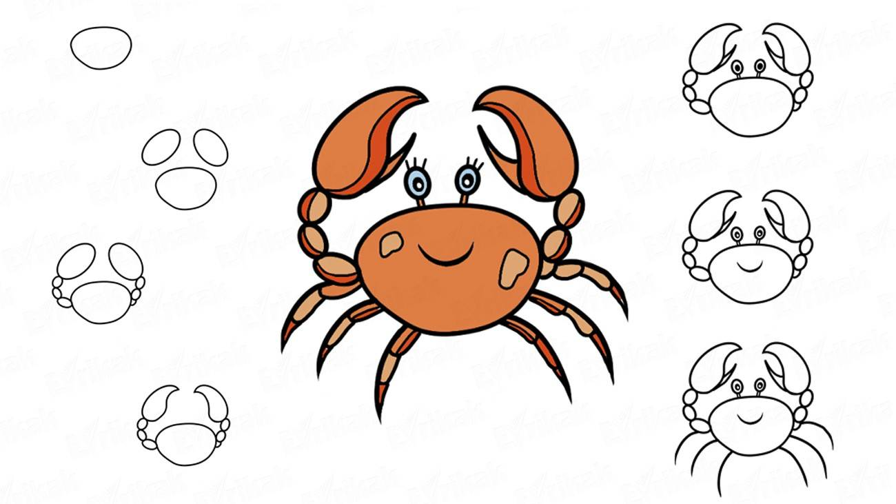 How to draw a funny crab (+ coloring)