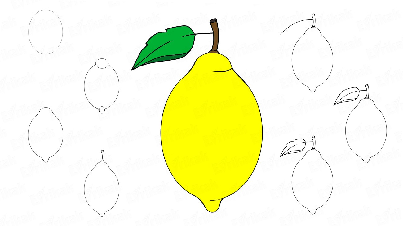 How to draw a lemon with leaf (+ coloring)