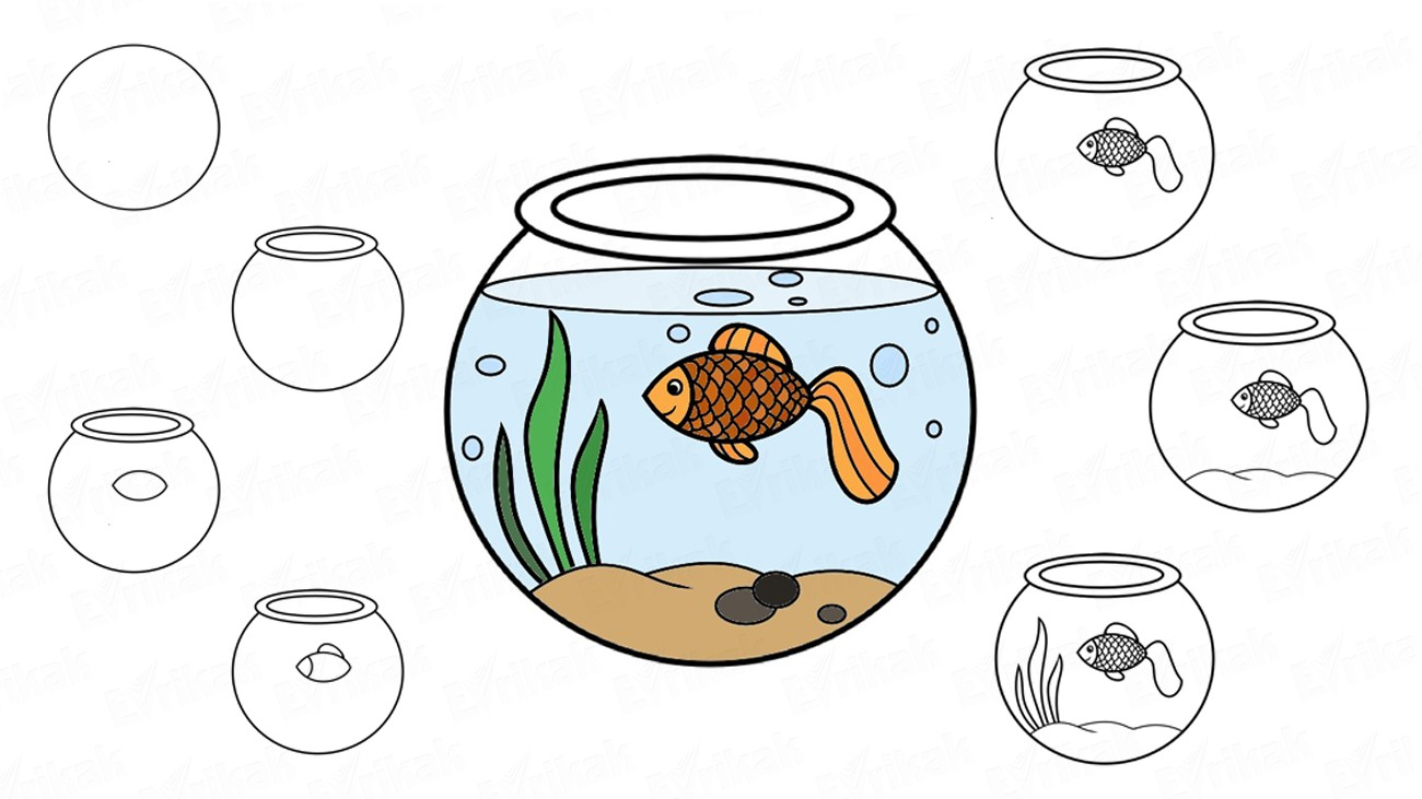 Learn to draw an aquarium with a goldfish in stages (+ coloring)