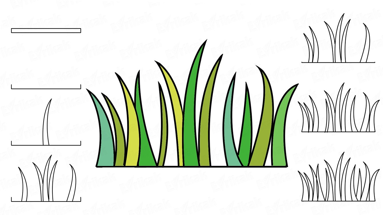 Learn to draw the nice grass using a pencil (+ coloring)
