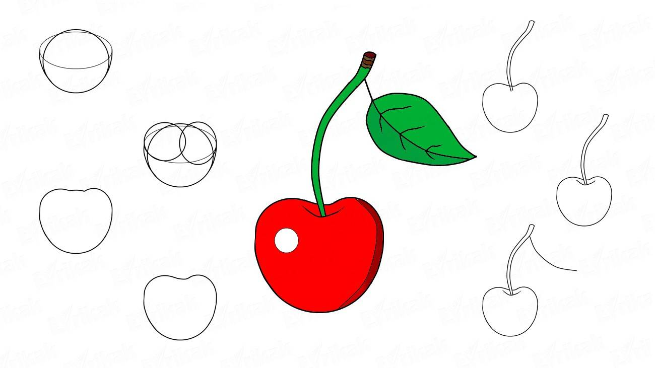 Learn to draw a cherry for a child (+ coloring)