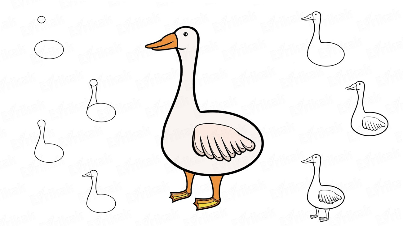 Learn how to draw a goose for children (+ coloring)