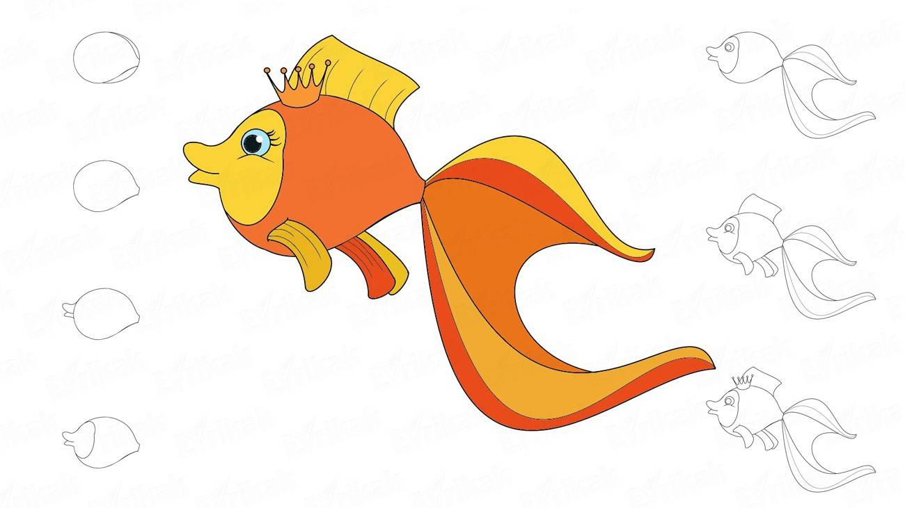 Learn to draw a golden fish for a child step by step (+ coloring)