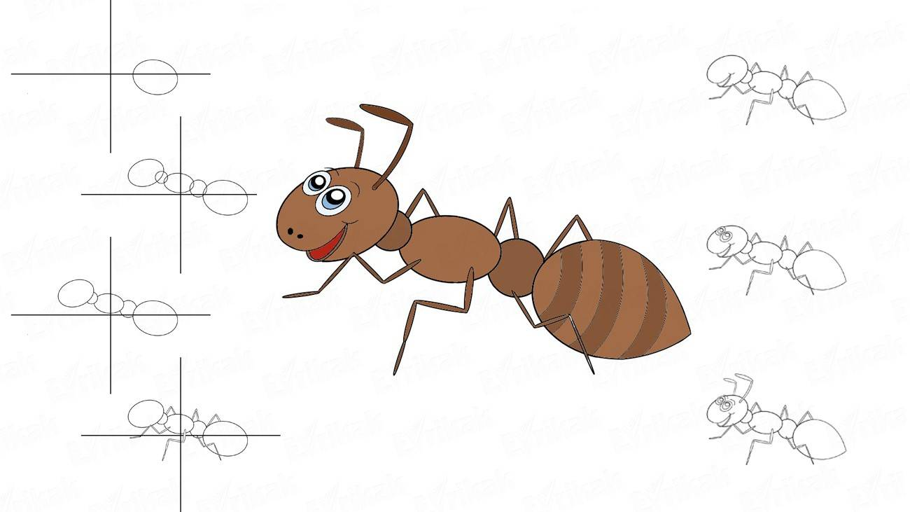 Learn to draw fairy ant for a child in stages (+ coloring)