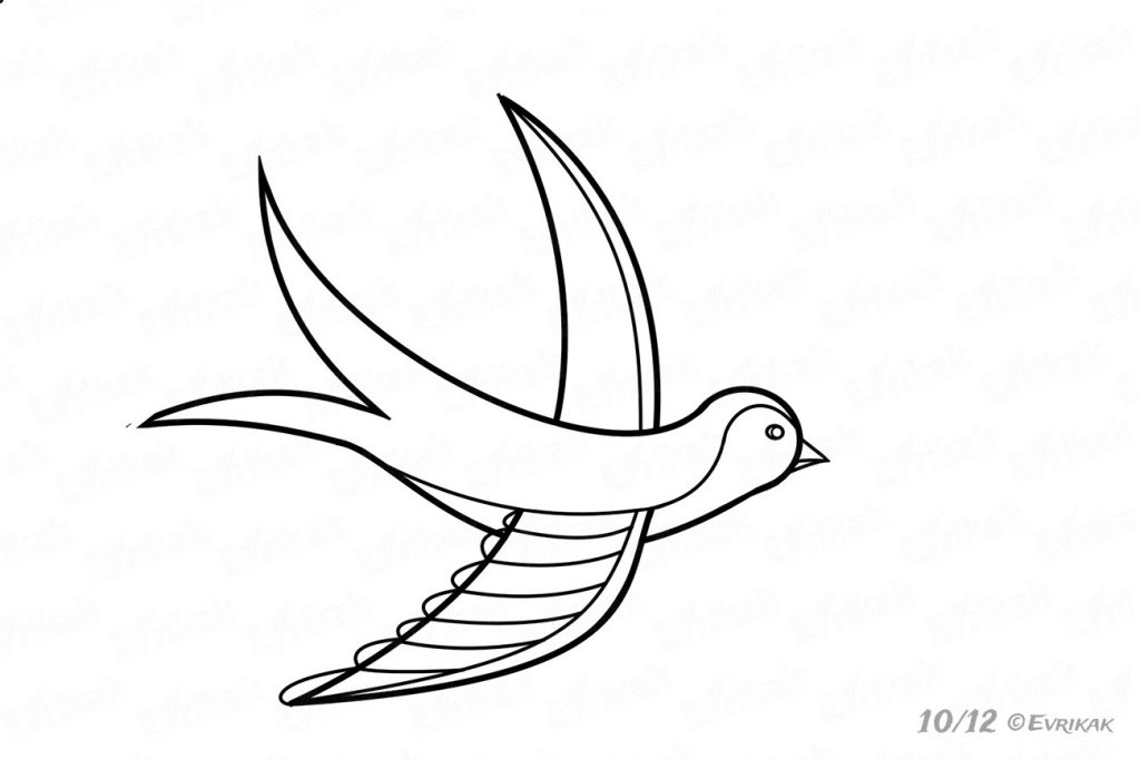 How To Draw A Swallow In A Flight For Children In Stages
