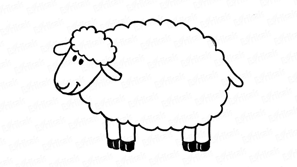 Learn to draw a fabulous sheep quickly in steps (within 30 seconds)
