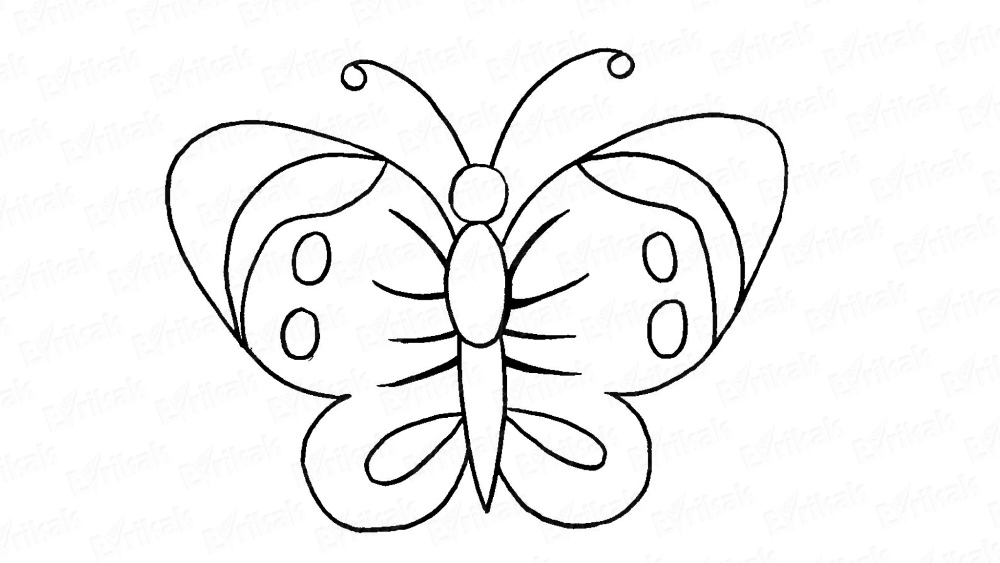 Learn to draw a butterfly on a sheet of paper step by step