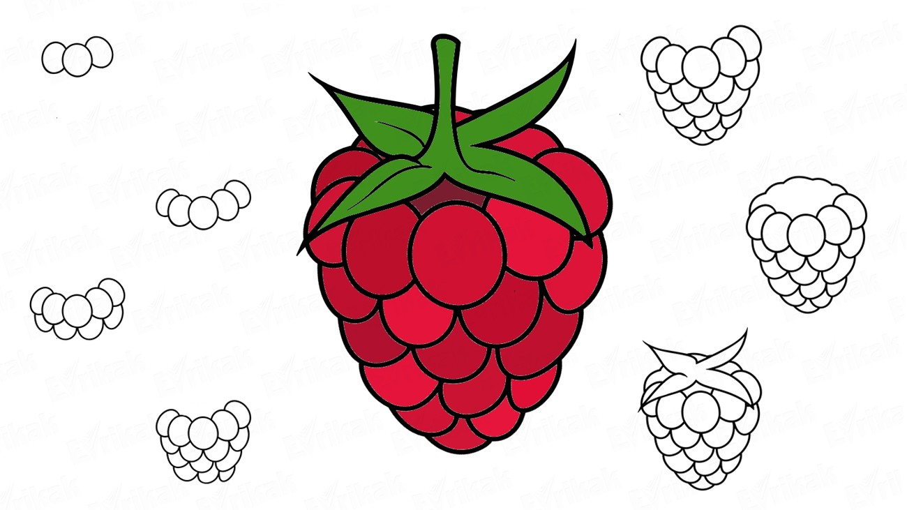 Learn to draw a raspberry step by step together with a child (+coloring)