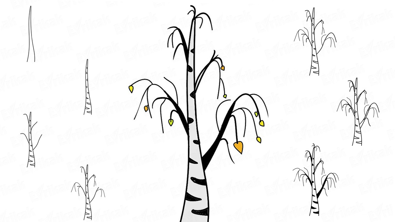 Learn to draw an autumn birch in stages using a pencil (+ coloring)