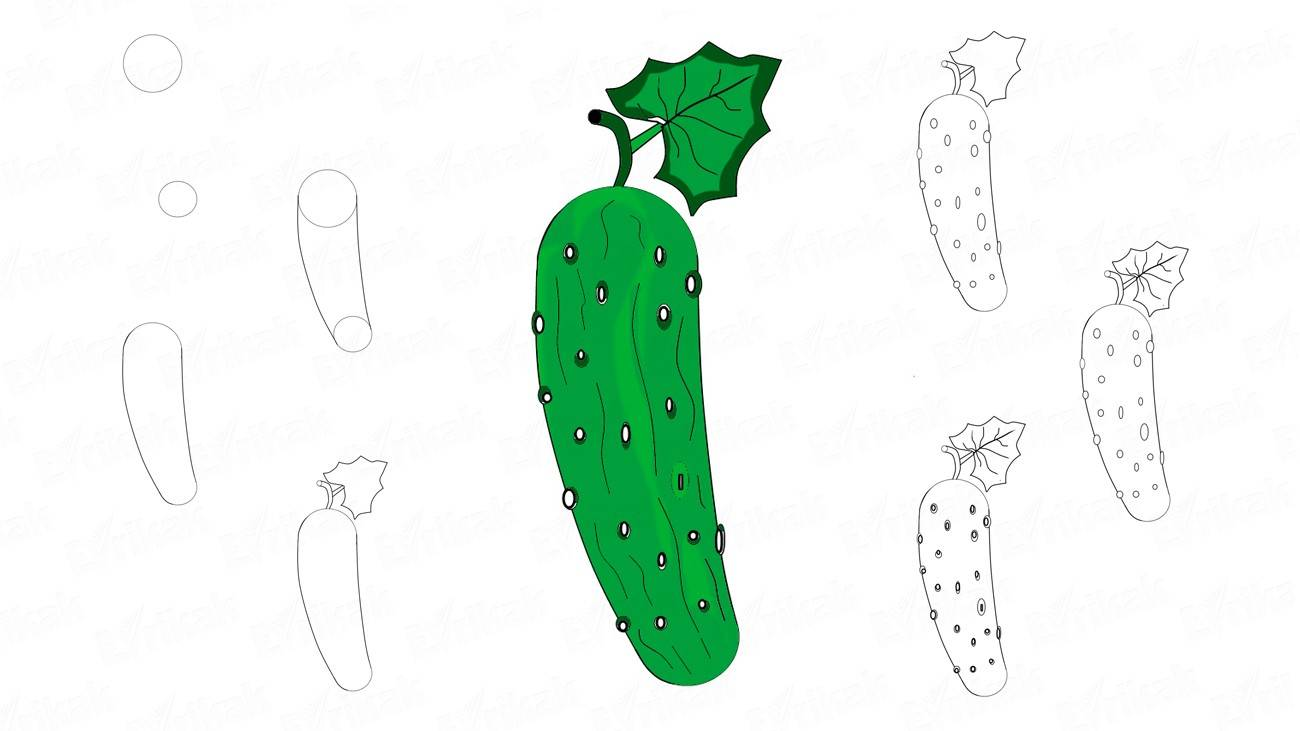 How to draw a cucumber with a leaf