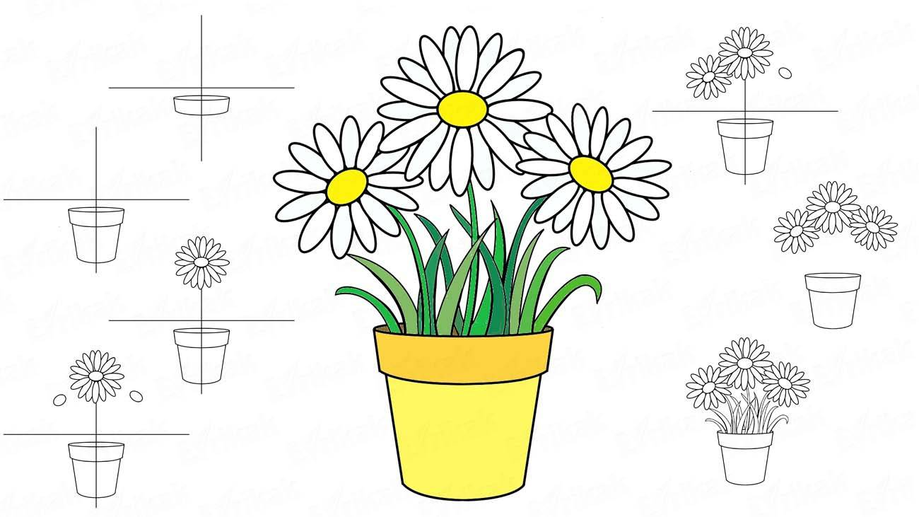 How to draw flowers in a flowerpot (+ coloring)