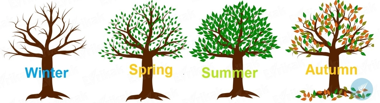 How to teach a child the seasons and months of the year