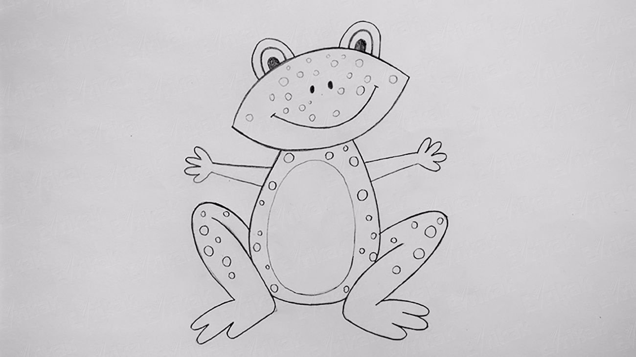 How to draw a frog step by step using a pencil