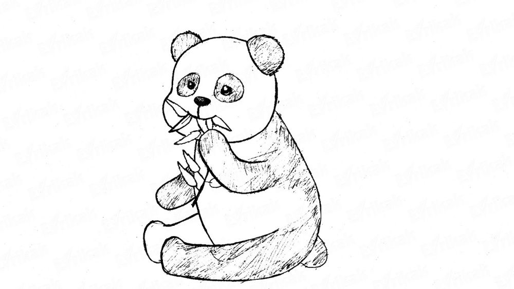 How to draw a little panda using a pencil