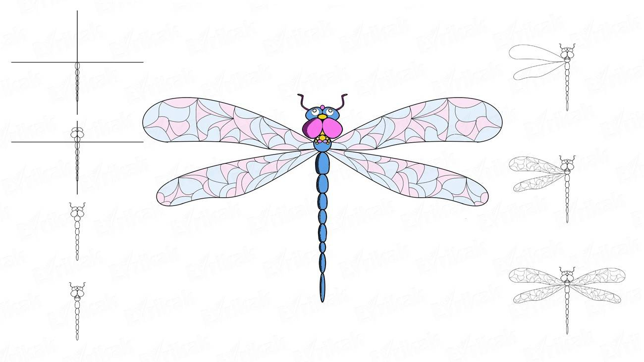 How to draw a dragonfly using a pencil