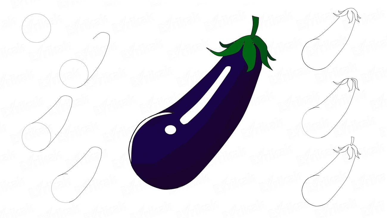 How to draw aubergine step by step