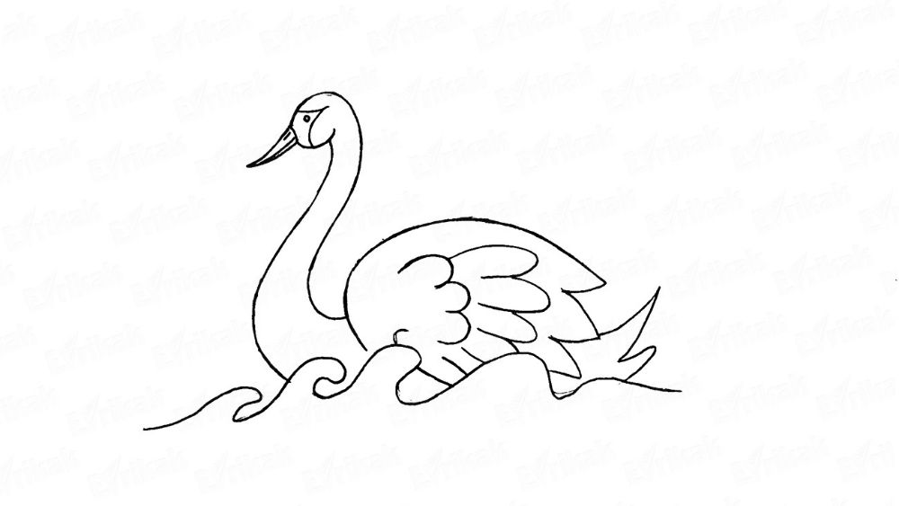 How to draw a floating swan step by step