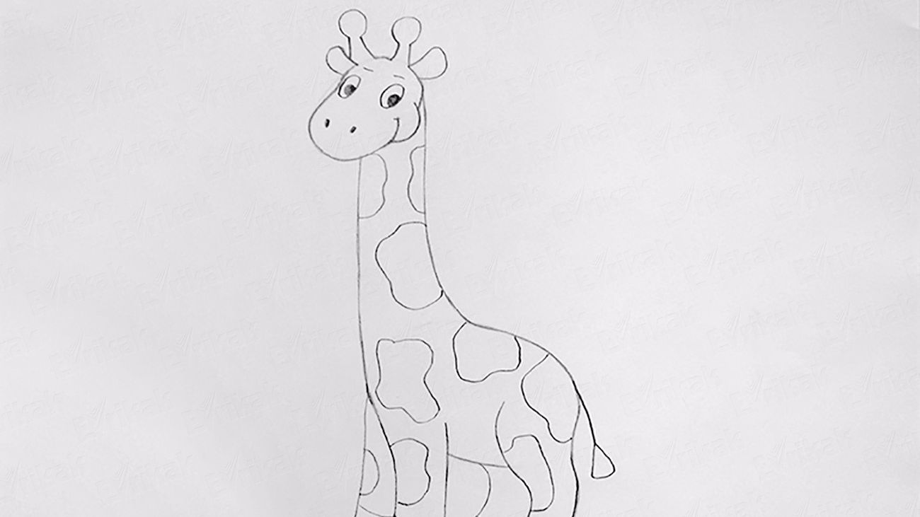 Learn to draw a giraffe step by step using a pencil